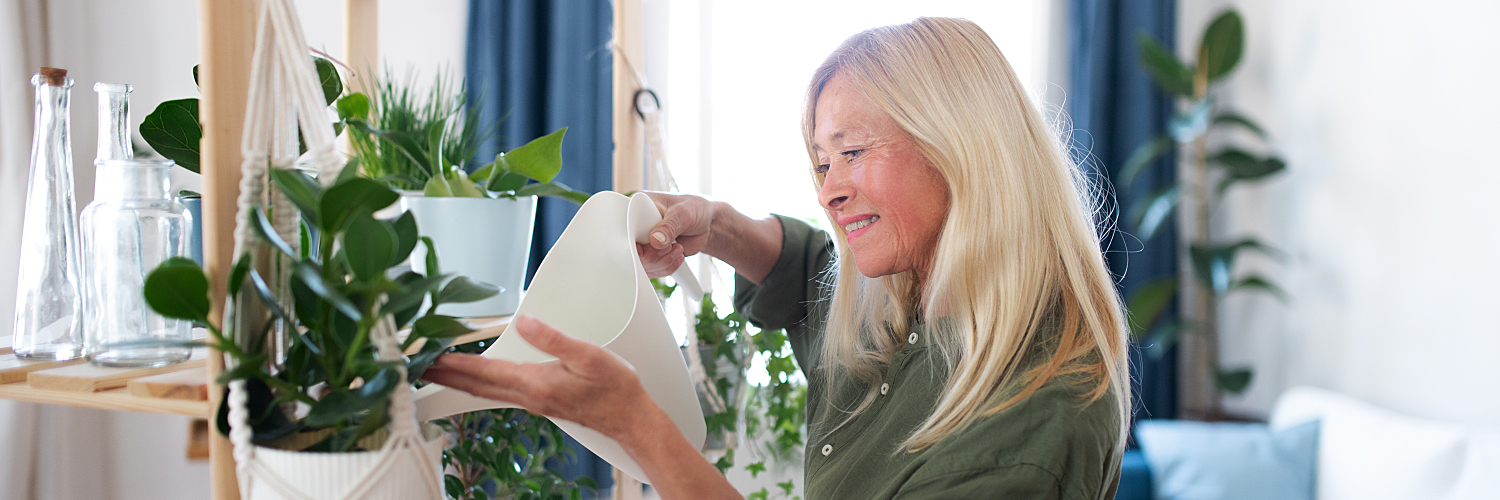 Houseplants for Beginners: How to Practice the Hobby in Retirement